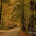 Autumn Country Road by Deborah Benoit