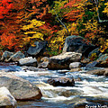 Autumn Creek by Bruce Nutting