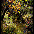 Autumn Creek by Ernie Echols
