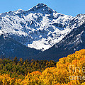 Autumn Curtains by Jim Garrison