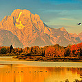 Autumn Dawn At Oxbow Bend by Greg Norrell