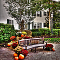 Autumn Display At The Sagamore Resort by David Patterson