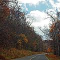 Autumn Drive2581 by Carolyn Stagger Cokley