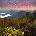 Autumn Evening Star by Debra and Dave Vanderlaan