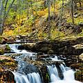 Autumn Falls  by Saija  Lehtonen