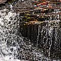 Autumn Falls by Steve Harrington