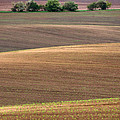 Autumn Fields Of Moravia by Jaroslaw Blaminsky