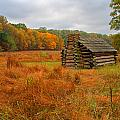 Autumn Foliage In Valley Forge by Michael Porchik