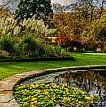 Autumn Garden by Adrian Evans