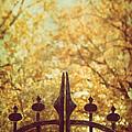 Autumn Gates by Margie Hurwich