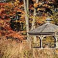 Autumn Gazebo by Living Color Photography Lorraine Lynch