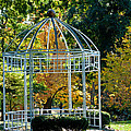 Autumn Gazebo by Tikvah's Hope
