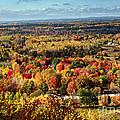 Autumn Glory Landscape by Gwen Gibson