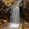 Autumn Gold And Waterfall by Leland D Howard