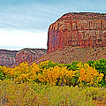 Autumn Gold On Highway 211 Going Into Needles District Of Canyonlands National Park-utah   by Ruth Hager