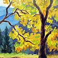 Autumn Gold Yosemite Valley by Karin  Leonard