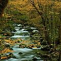 Autumn Greenbriar Cascade by Nunweiler Photography