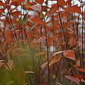 Autumn Harmony 3 by Teo SITCHET-KANDA
