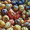 Autumn Harvest by Daniel Hagerman