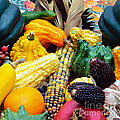 Autumn Harvest by Tikvah's Hope