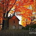 Autumn Haunt by Terri Gostola