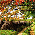 Autumn Hay Bales Blue Ridge Mountains II by Dan Carmichael