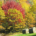 Autumn Hay Being Harvested In Maine by Keith Webber Jr