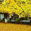 Autumn Homestead by Rodney Lee Williams