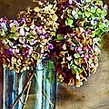 Autumn Hydrangeas Photoart by Debbie Portwood