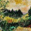 Autumn In Bois Jacques  by Pol Ledent