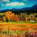 Autumn In Colorado by Beth Ferris Sale
