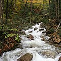 Franconia Notch In Autumn  by Christiane Schulze Art And Photography
