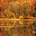 Autumn In Mirror Lake by Paul W Faust -  Impressions of Light