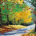 Autumn In Mt Wilson by Graham Gercken