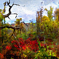 Autumn In New England by Joan Reese