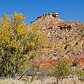Autumn In Palo Duro Canyon 110213.119 by Ashley M Conger