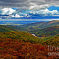 Autumn In Shenandoah Park by Tom Gari Gallery-Three-Photography