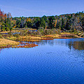 Autumn In The Adirondacks II by David Patterson