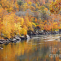 Autumn In The Gorge by Larry Ricker