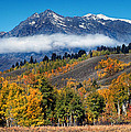 Autumn In The Tetons by Dave Mills