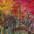 Autumn In The Woods by Karin  Dawn Kelshall- Best
