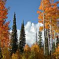 Autumn In Utah by Stan Scott