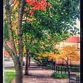 Autumn In Vancouver Washington by Melissa Coffield