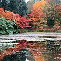 Autumn In Vandusen Botanical Garden by Gerry Bates