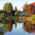 Autumn In Wisconsin by Ms Judi