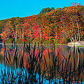 Autumn Lake by Anthony Sacco