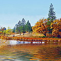 Autumn Lake In The Woods by Joyce Dickens