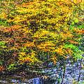 Autumn Landscape by Liz Leyden