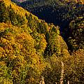 Autumn Landscape by Pati Photography