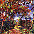 Autumn Leaf Road by David Lloyd Glover